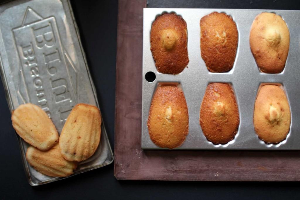 madeleines de commercy recette