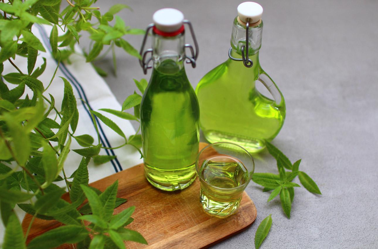 ¿Cómo hacer tu licor de verbena casero?  |  Royal Chill - blog ...